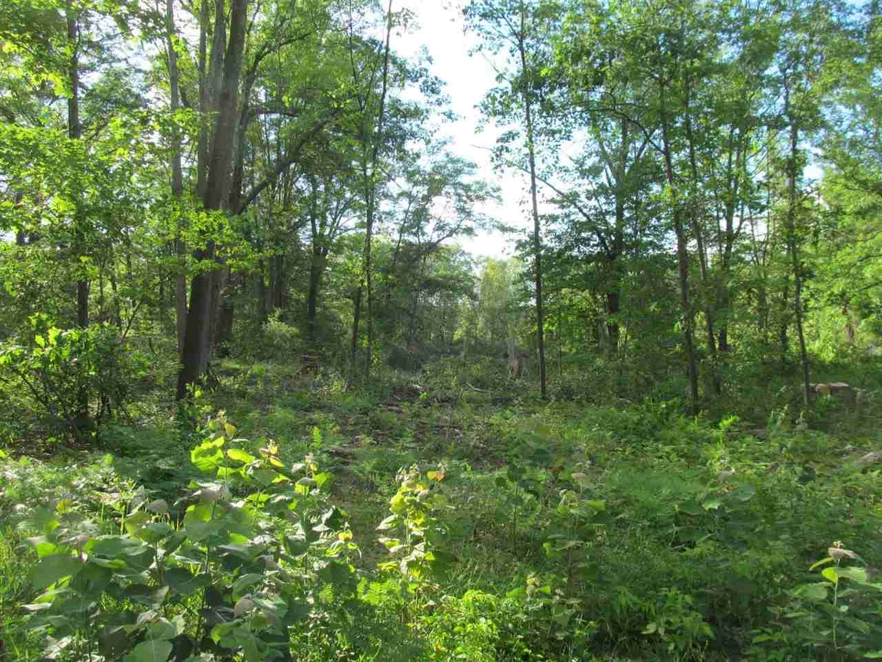 Lot 17 Pond Side Drive - Photo 1
