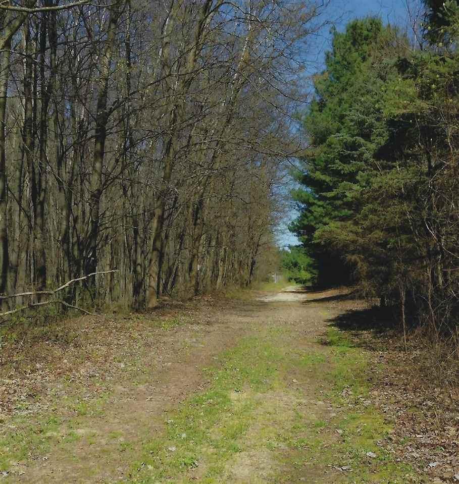 4644 Walz Road - Photo 1