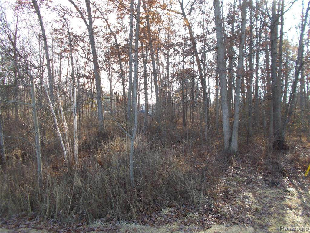 0000 Coldwater Lot #3 Rd - Photo 1