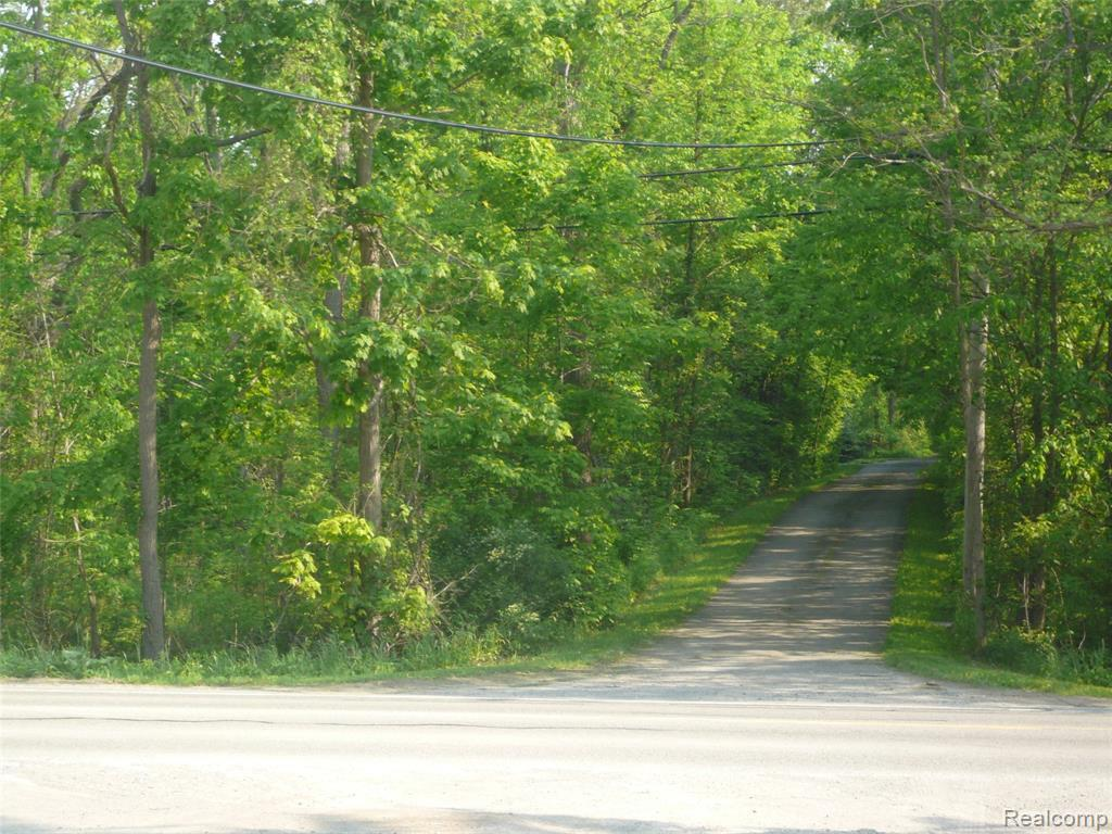0 Romeo Road - Photo 1