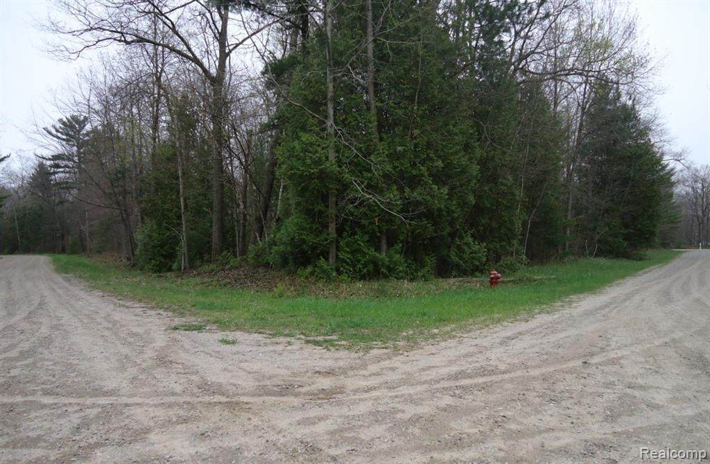 00 Willowbend Rd - Photo 1