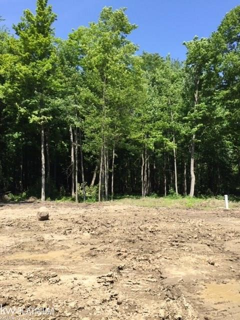 Lot 3,67613 Ashley Ave - Photo 1
