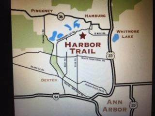 9997 Harbor Trail Dr - Photo 1