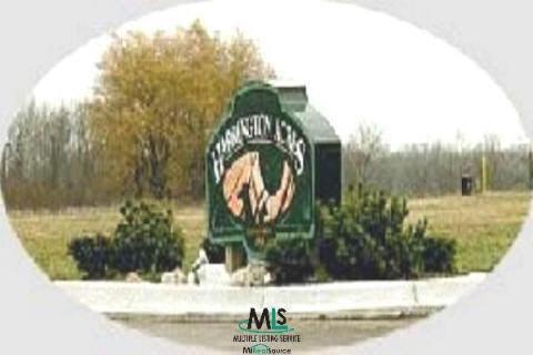 0 Andi Street Lot 24, Croswell, MI 48422 (MLS #908095) :: The Tom Lipinski Team at Keller Williams Lakeside Market Center