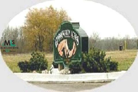 0 Andi Street Lot 25, Croswell, MI 48422 (MLS #908097) :: The Tom Lipinski Team at Keller Williams Lakeside Market Center