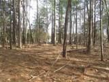 5+ACR Primrose Path - Photo 6