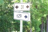 31AC Parcel #56-11 Terrapin Swamp Rd Rd - Photo 2