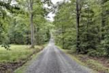 13850 Mountain Laurel Grv - Photo 50