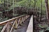 4705 Lady Slipper Path - Photo 44