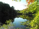 9.1ac Pond Ridge Ln - Photo 15