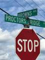 6.84AC Proctors Bridge Rd - Photo 9