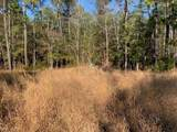 5.05ac Off Old Mill  (2 Lots) Ln - Photo 6