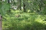 57 Deer Path - Photo 41
