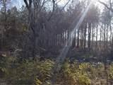 Lot 1 Old Branchvill Rd - Photo 2