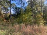 .42AC Pinehaven Rd - Photo 1