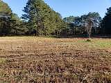5 Acre Oneil Rd - Photo 10