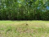 Lot 13 Lakeview Dr - Photo 11