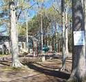 8 Tree Bark Pl - Photo 9