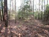 5 Ac Pineview Rd - Photo 14