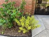 4877 Honeygrove Rd - Photo 5