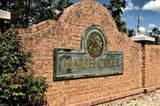 812 Bryson Arch - Photo 46