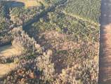 30 Ac Meadow Country Rd - Photo 1