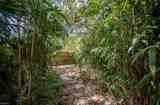 2301 Plantation Dr - Photo 37