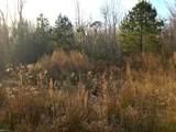 31161 Cypress Woods Trl - Photo 9