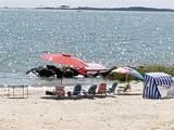 1101 Bay Tree Beach Rd - Photo 41