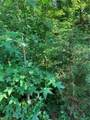 6994 Enfield Rd - Photo 1