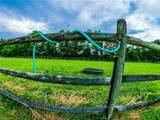 1669 Muddy Creek Rd - Photo 48