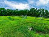 1669 Muddy Creek Rd - Photo 49