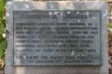 1008 Magnolia Ave - Photo 47