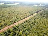 103 Acres Dutch Rd - Photo 6