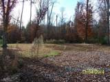 LOT 19 Woodland Dr - Photo 5