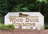 909 Wood Duck Commons - Photo 30