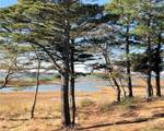 407 Cattail Cove Ct - Photo 45