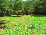 36.5ac Cattail Rd - Photo 4