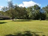 1424 Branchview Way - Photo 10
