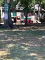 7 Treefern Pl - Photo 7