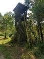 7252 Featherbed Rd - Photo 48