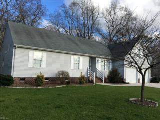 1540 Olde Mill Creek Dr, Suffolk, VA 23434 (#10111562) :: ERA Real Estate Professionals