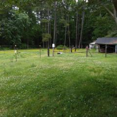 608 Allens Mill Rd, York County, VA 23692 (#10127353) :: RE/MAX Central Realty