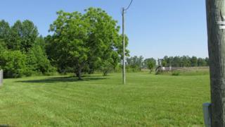 8792 Pineview Rd, Suffolk, VA 23437 (#10128041) :: Rocket Real Estate
