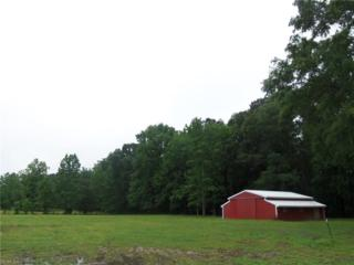 20564 Reynolds Dr, Isle of Wight County, VA 23314 (#10128218) :: RE/MAX Central Realty