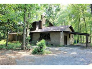 206 Cameron Dr, Newport News, VA 23606 (#1641914) :: ERA Real Estate Professionals