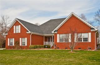 3319 Mintonville Point Dr, Suffolk, VA 23435 (#10111342) :: ERA Real Estate Professionals