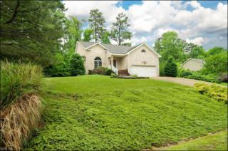 4980 Westmoreland Dr, Williamsburg, VA 23188 (#10127913) :: Berkshire Hathaway Home Services Towne Realty