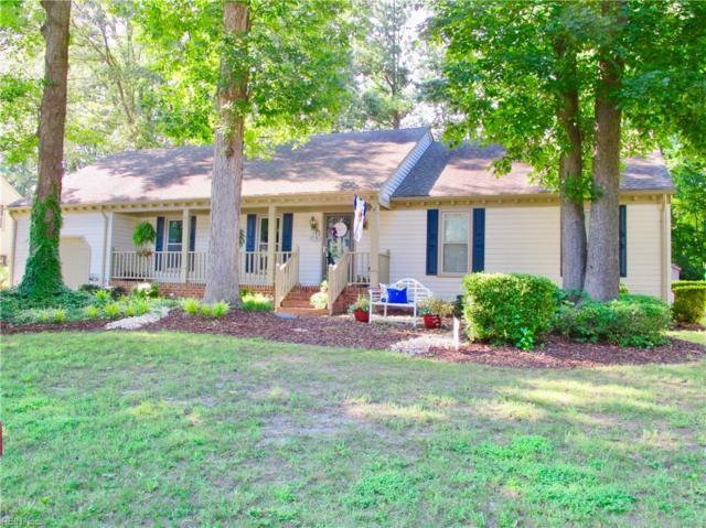 608 Sherringfield Ter, Chesapeake, VA 23322 (#10218745) :: Reeds Real Estate