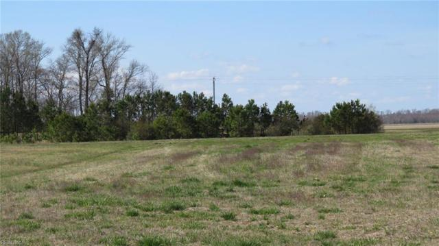 LOT 24 Blue Heron Blvd, Perquimans County, NC 27944 (#10114775) :: The Kris Weaver Real Estate Team